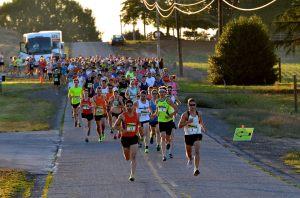 oregon-wine-country-half-runners-2013