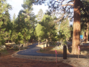 "Some of the paved trails comprising the race course . - Photo by Sisters ""Better Half"" Marathon"